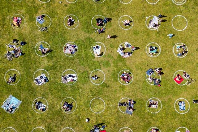 В парках Сан-Франциско нарисовали круги ради соблюдения дистанции из-за пандемии. Фотография