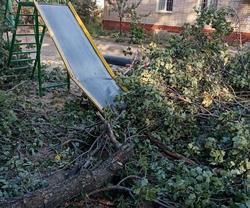 Дерево упало на детскую площадку