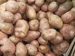 'Индекс картошки': доходы саратовцев за год упали на 27%