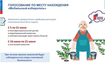 Красноярцы могут проголосовать по поправкам в Конституцию «не по прописке»