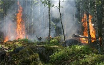 Особый противопожарный режим сняли в Красноярске и большинстве территорий края
