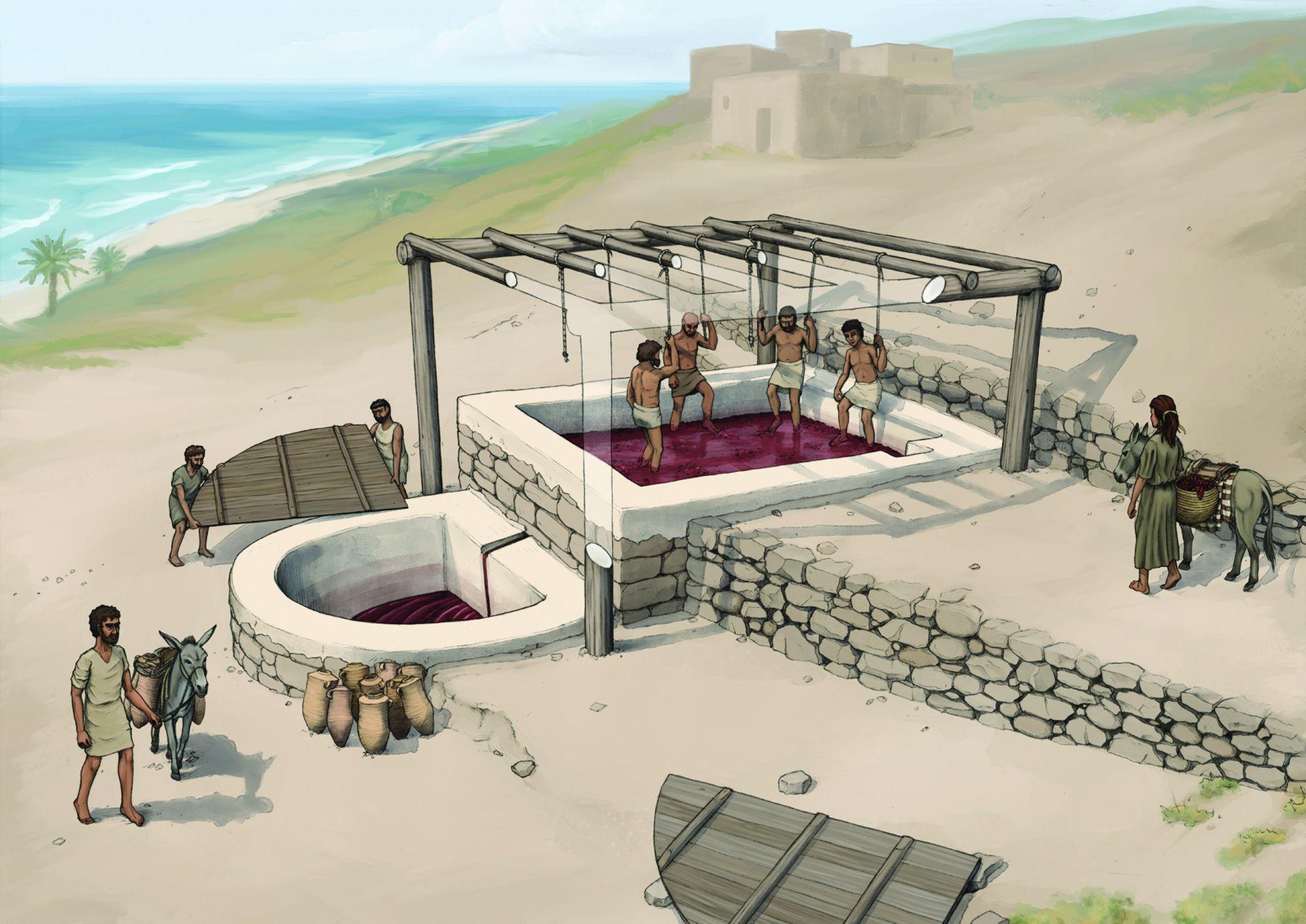 В Ливане нашли пресс для изготовления вина VII века до н. э.