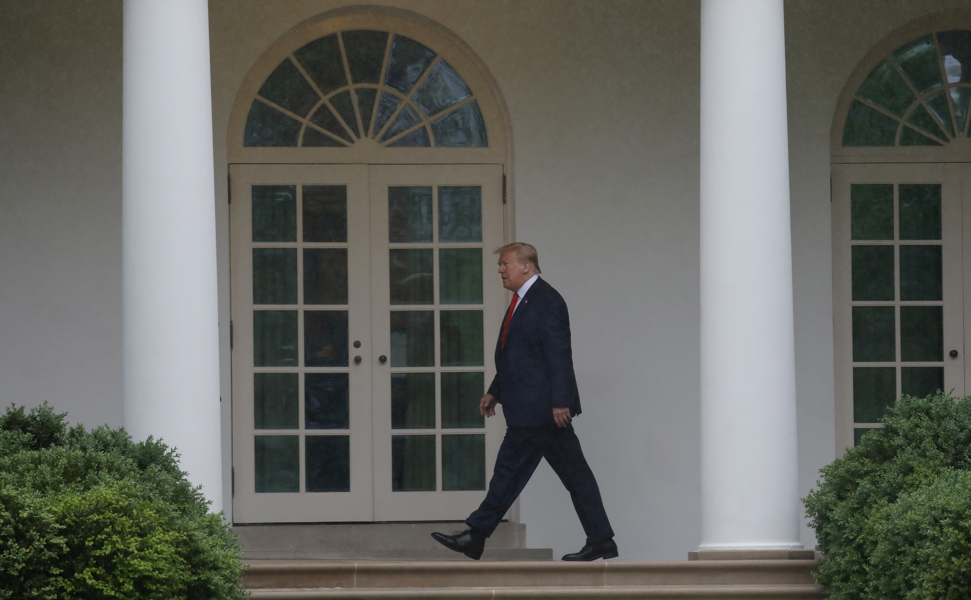 СМИ узнали о планах Белого дома создать аналог ВОЗ