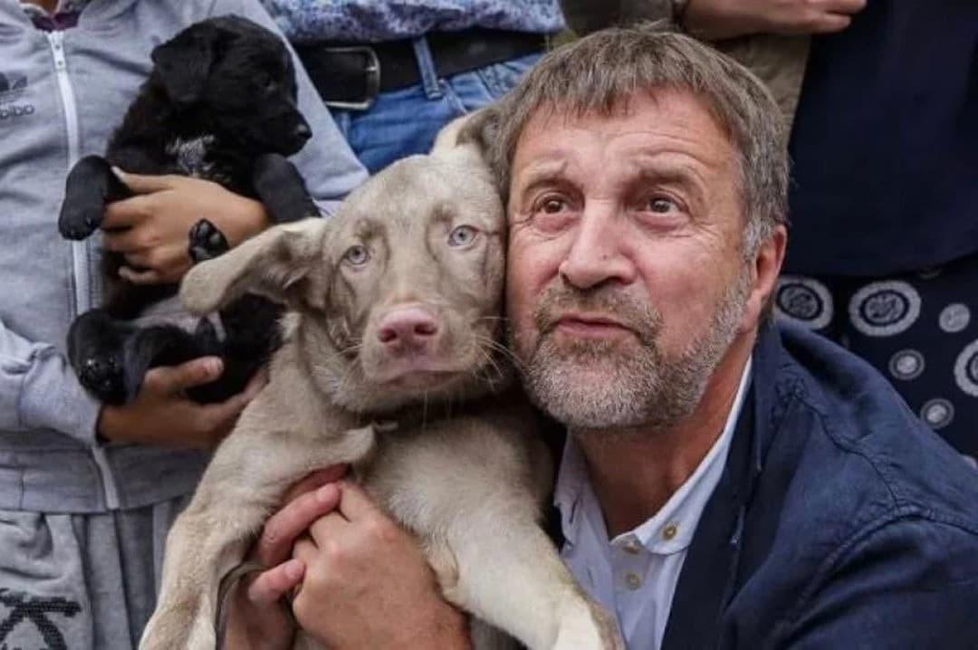 7 звезд, которые помогают бездомным животным