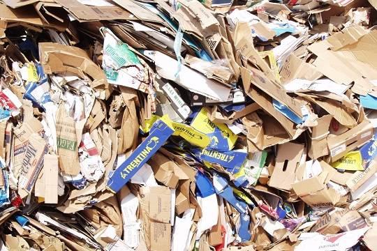 Минпромторг не согласовал законопроект Минприроды о мусорной реформе
