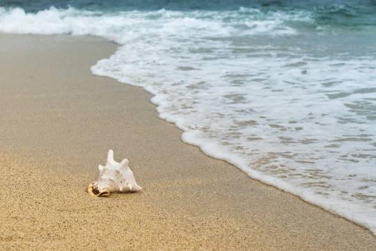 На российском пляже погиб ребёнок