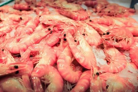 Что нашли эксперты в креветках «Каждый день», зачем вымачивают Fish House и Polar premium, сколько белка в Vici Приорити