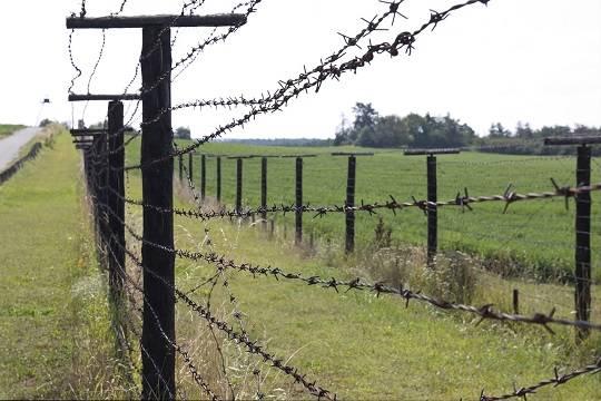 Президент Польши ввёл режим ЧП на границе с Белоруссией из-за наплыва мигрантов