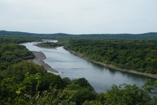 Раскрыта причина смерти троих пропавших на реке в Приморье несовершеннолетних братьев