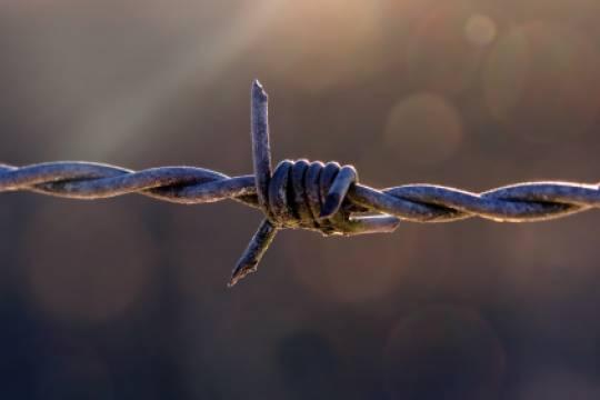 Задержанных по делу Игнатенко россиян на Шри-Ланке отпустили