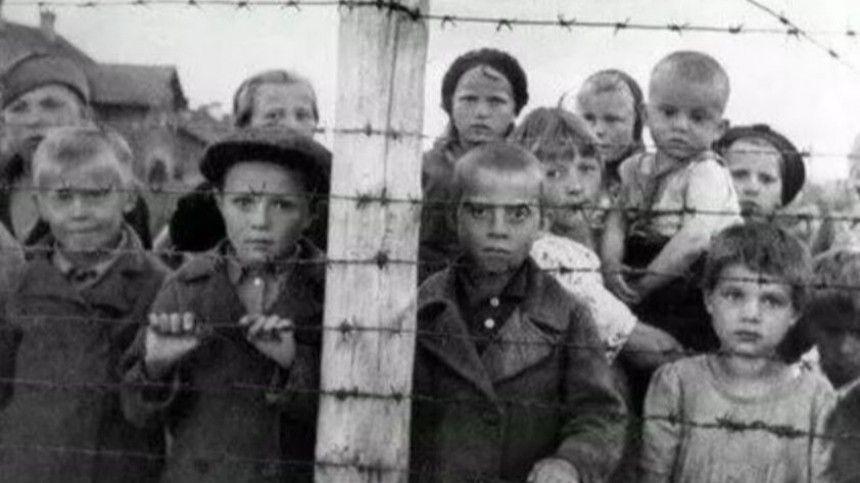 СКР возбудил уголовное дело о геноциде жителей Карелии в годы ВОВ