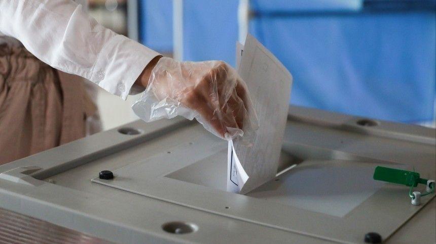 Более 250 тысяч заявок от наблюдателей за голосованием по поправкам в Конституцию поступило в Общественную палату РФ