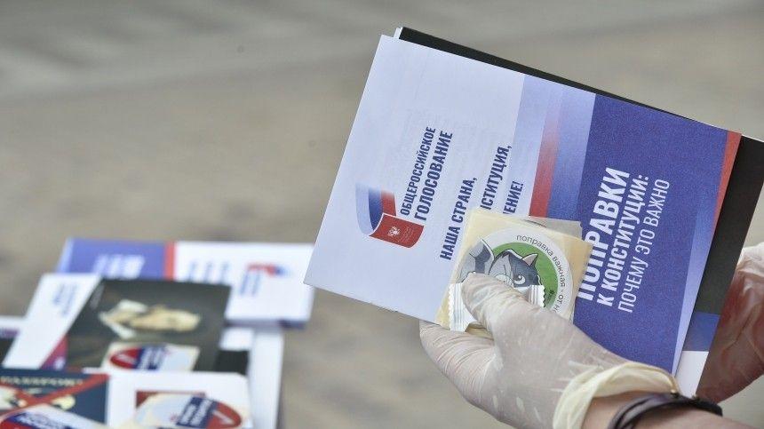 Международные наблюдатели отметили «технологическую продвинутость» голосования по поправкам в Конституцию