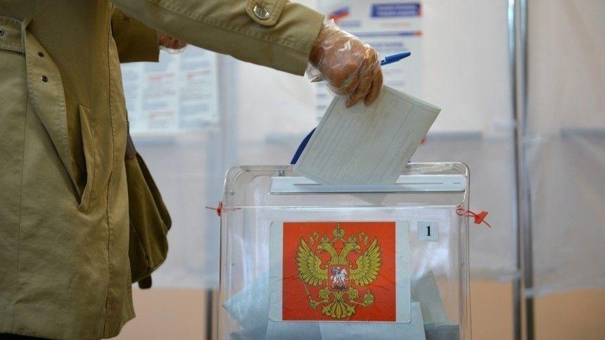 В голосовании по поправкам в Конституцию приняли участие 30 миллионов человек
