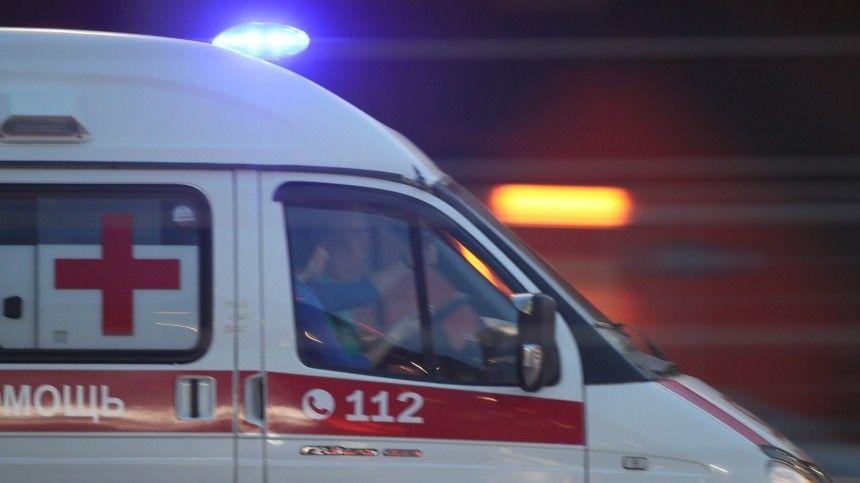 «Погиб наш сотрудник»: стали известны детали о погибшей семье с Алтая
