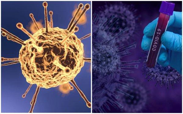 Коронавирус может привести к болезни Альцгеймера