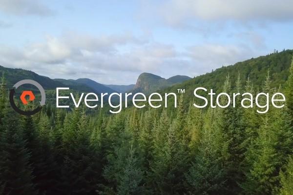 Pure Storage: сервис Evergreen вышел на новый уровень показателей