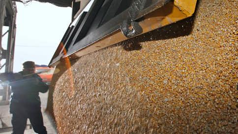 Пшенице добавят пошлину // Экспорт зерновых ждут дополнительные ограничения