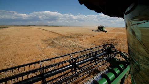 Цену нового урожая смыло дождем // Российская пшеница дешевеет перед стартом нового сезона