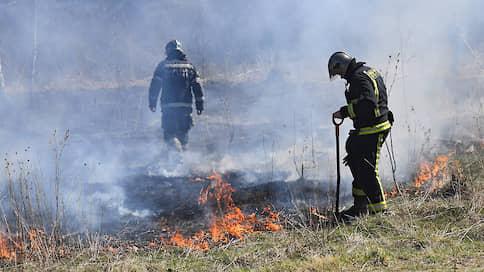 """Леса готовы гореть наполовину // """"Ъ"""" выяснил, что предприняли власти после масштабных лесных пожаров прошлого года"""