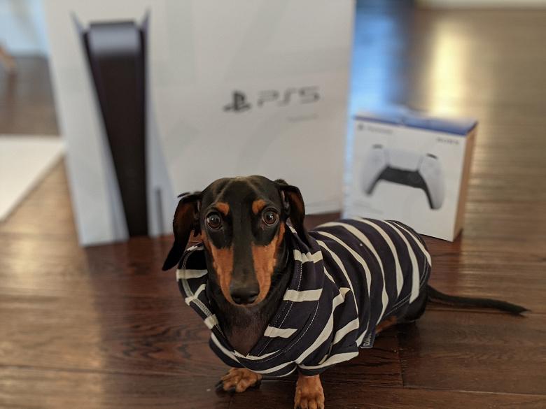 Sony исправила проблему с загрузкой игр PlayStation 5