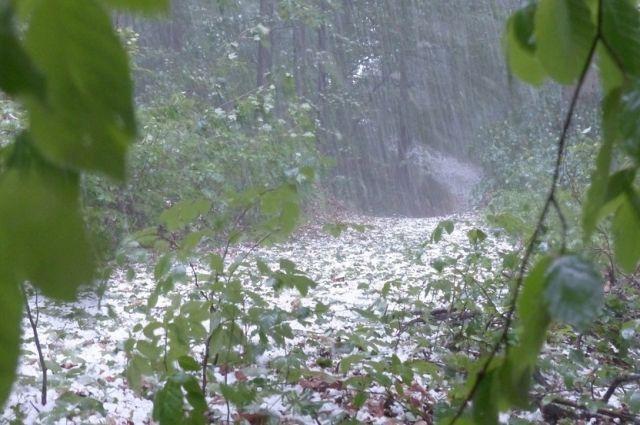 Вильфанд предупредил об опасной погоде в ряде российских регионов