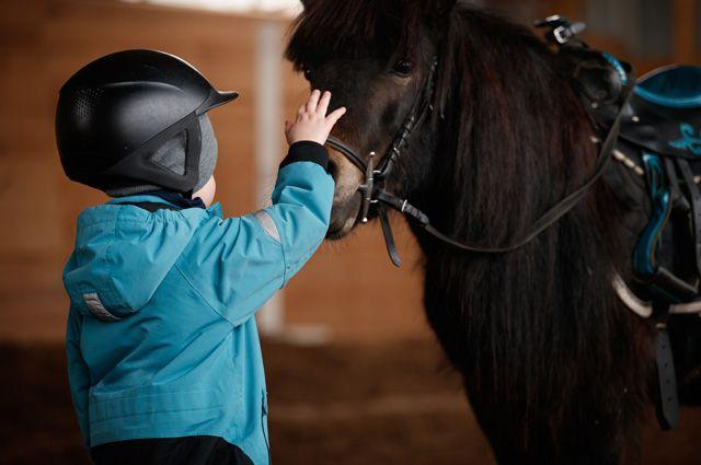 Лошадка – друг особенных детей. Что такое иппотперапия?