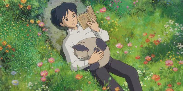 Драма о взрослении и фэнтези о драконах: 7 мультфильмов студии Ghibli