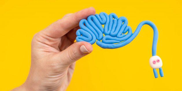 5 причин прокачивать мозг, даже если всё на свете сейчас можно загуглить