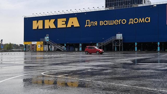 SVT (Швеция): Ikea использует нелегальную древесину с Украины