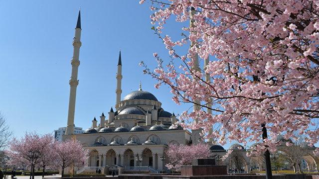 Yle (Финляндия): на российском Северном Кавказе Коран важнее Конституции, шорты запрещено носить даже туристам