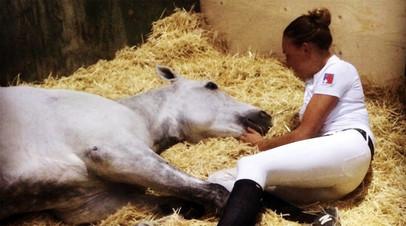 Падение в пропасть, оправдание за допинг лошади и «возвращение» Роналдиньо: околоспортивные события прошедшей недели