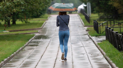 МЧС выпустило экстренное предупреждение о грозе и ветре в Подмосковье