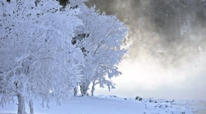 В Якутске из-за морозов -50 °С занятия в школах проходят удалённо