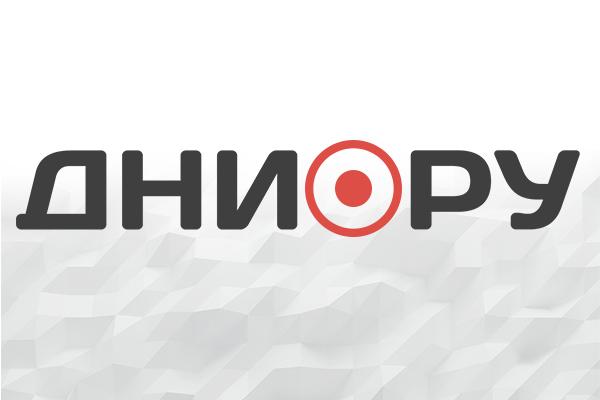 Под Петербургом 6 детей погибли при пожаре