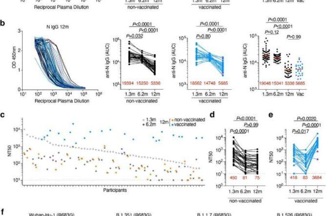 Вакцины повышают естественный иммунитет против SARS-CoV-2