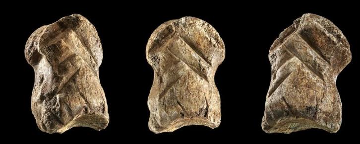 Красивая резьба по кости меняет наше представление о неандертальцах
