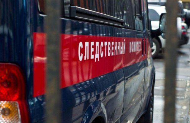 Бил сковородкой: сожитель расправился с матерью пятерых детей в Петербурге