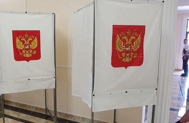 Петербуржец смог дважды получить бюллетень для голосования по поправкам