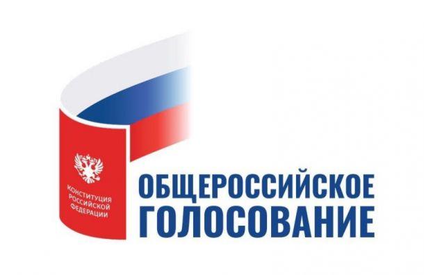 ЦИК предложил упростить порядок общероссийского голосования по Конституции