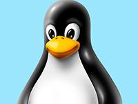 В Linux найдена опасная уязвимость