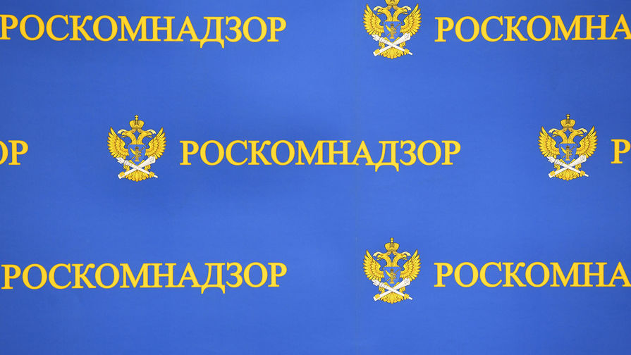 Роскомнадзор предостерег зарубежные IT-компании от вмешательства в российские выборы