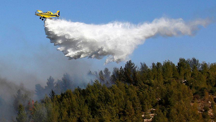 В регионах России потушили еще 80 лесных пожаров
