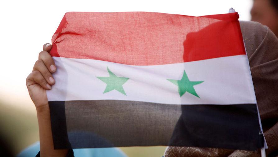 Посол России раскритиковал призывы к Дамаску о прекращении боевых действий