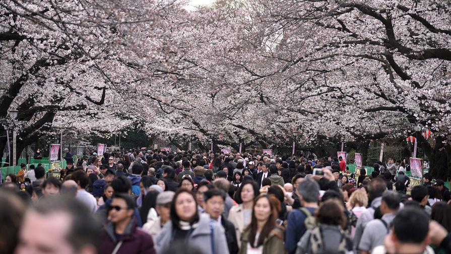 Безработица в Японии выросла до максимума за три года