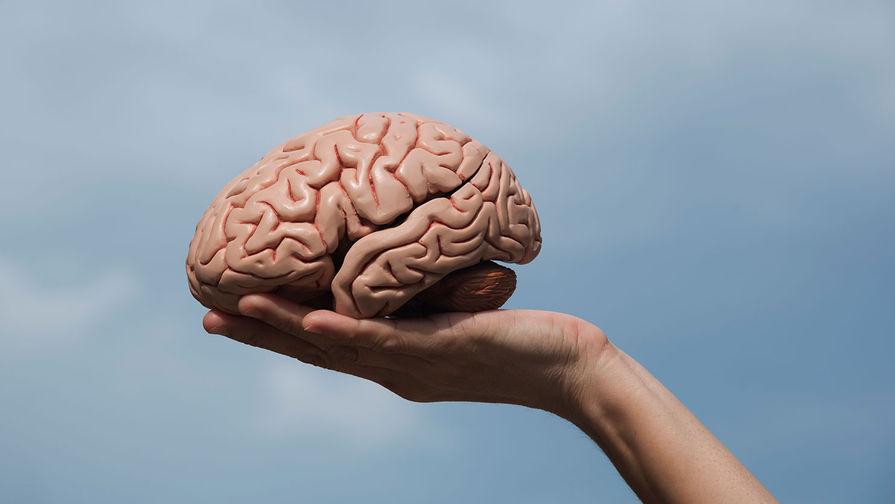 Врач посоветовала упражнения для улучшения памяти