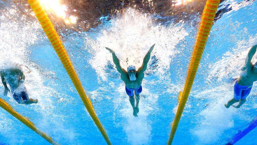 Призер Олимпийских игр Гречин решил возобновить карьеру