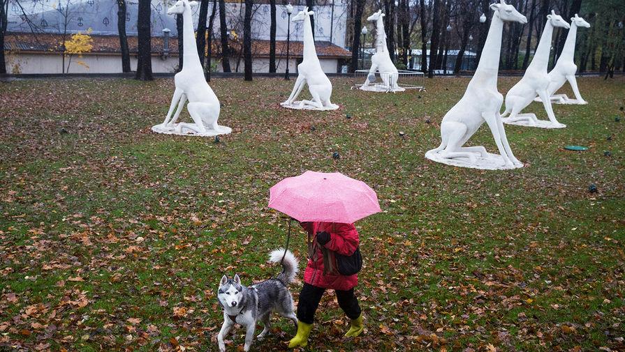 В Москве во вторник ожидается до +14°С и небольшой дождь