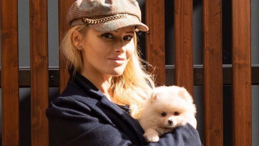 Дана Борисова пожаловалась Милонову на Элджея