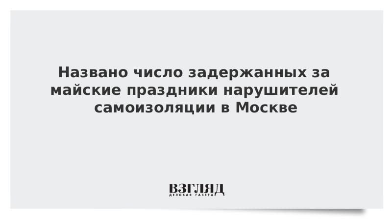 Названо число задержанных за майские праздники нарушителей самоизоляции в Москве